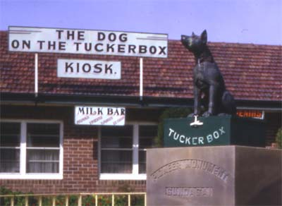 Dog on the Tuckerbox